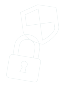 Privacy and Security Logo