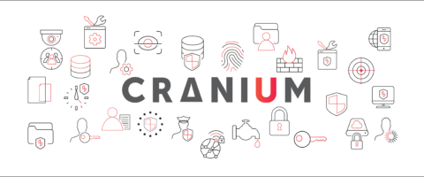 Cranium logo and cranium icons in red and grey